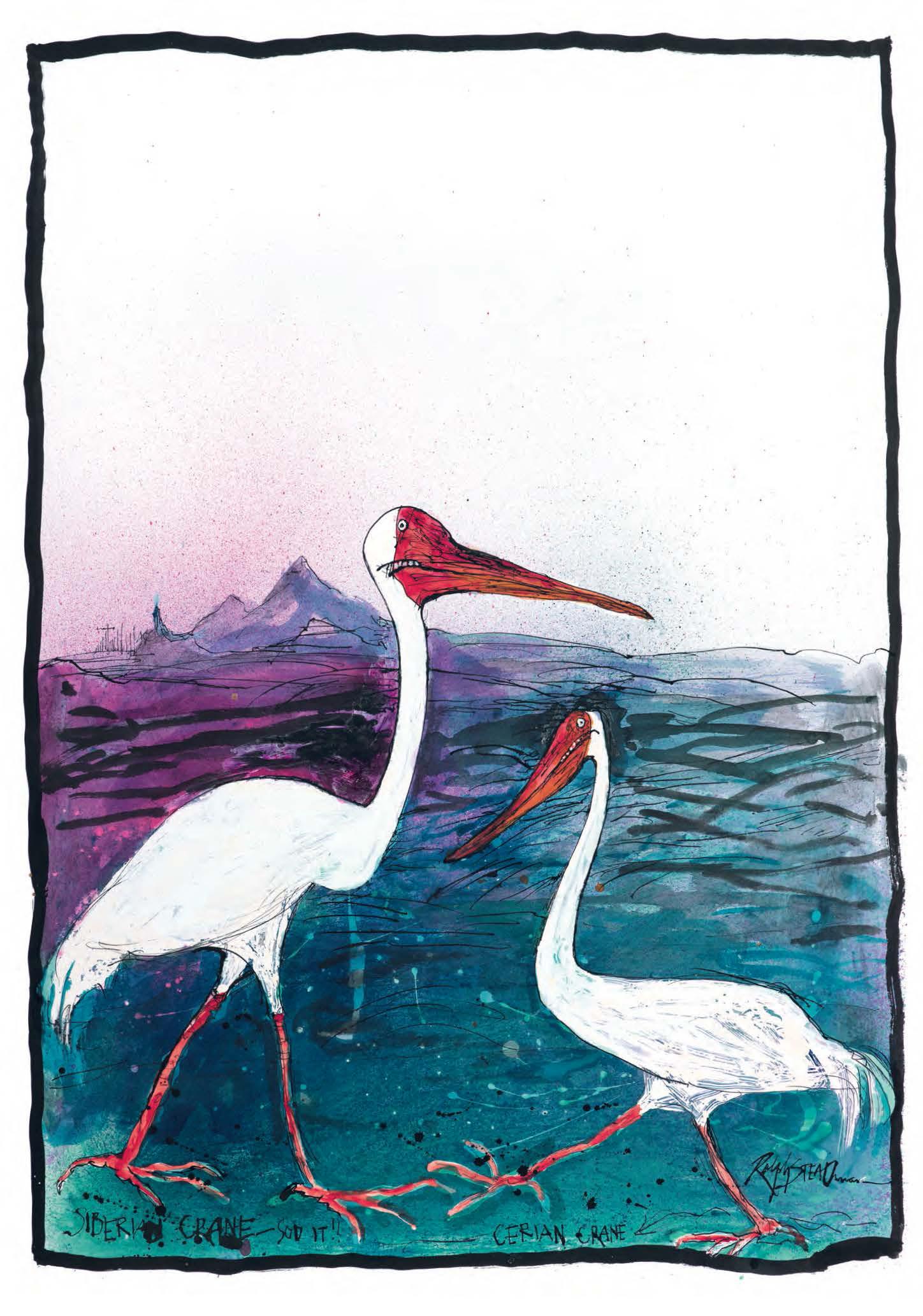"Inside Ralph Steadman's Gonzo World of ""Nextinct"" Birds"