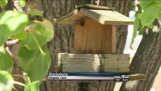 Birds likely to get sick, spread disease from dirty bird feeders