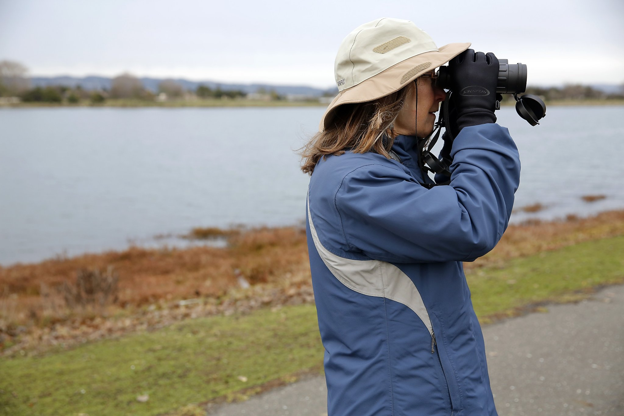 East Bay bird lovers flock for annual avian count