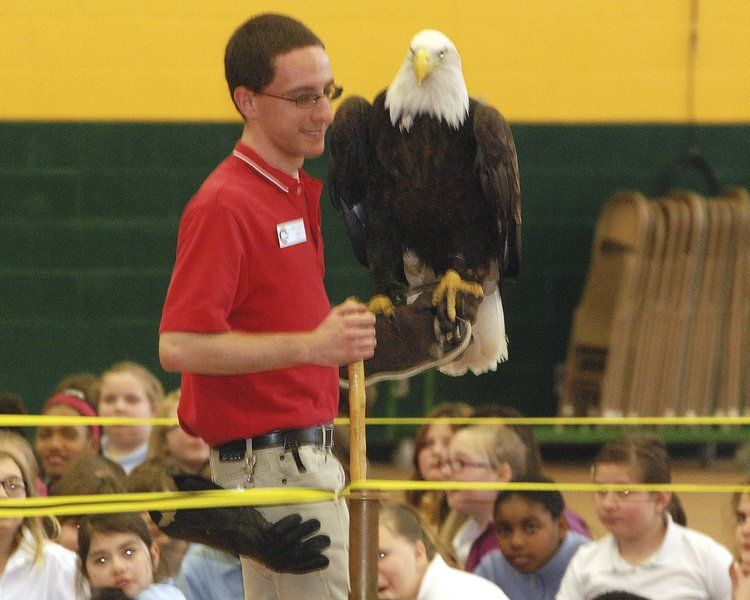 Eagle, other birds flock to DACC