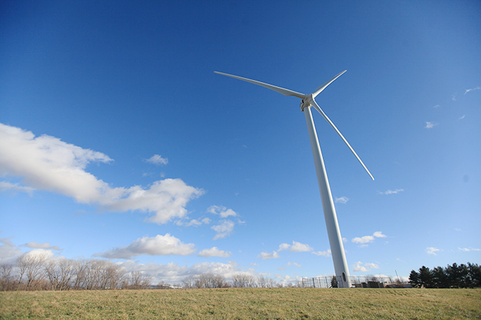 Campaign seeks to protect birds from wind turbines