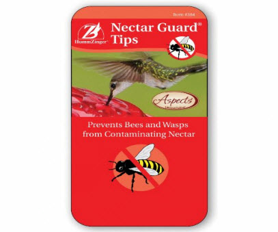 Hummingbird Feeder Guard Tips