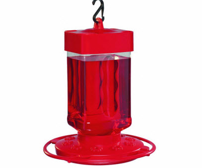 First Nature Plastic Feeder for Hummingbirds