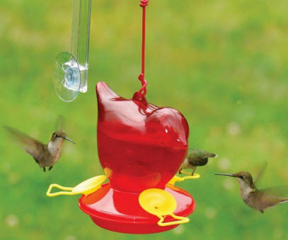 Songbird Hummingbird Feeder