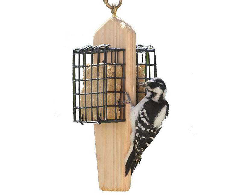 Birds Choice 2-Cake Hanging Suet Feeder