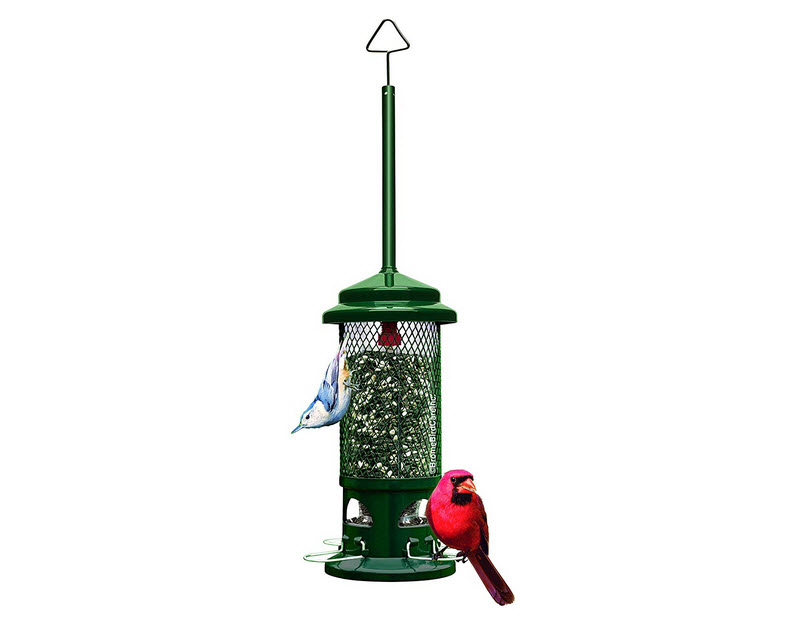 Squirrel Buster Standard Squirrel-Proof Bird Feeder