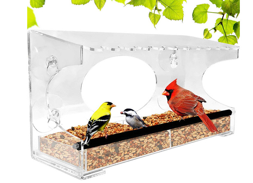 Nature Gear XL Feeder