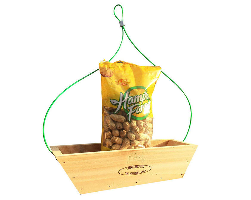 Open Platform Squirrel Feeder with Peanuts