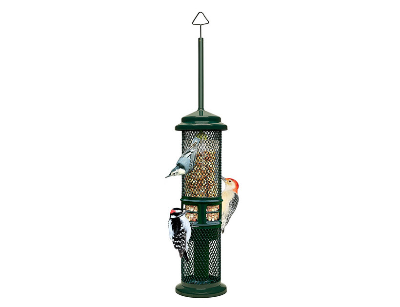 Squirrel Buster Woodpecker Feeder