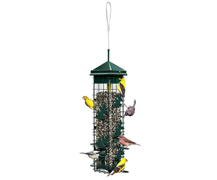 Squirrel Solution 200 Bird Feeder