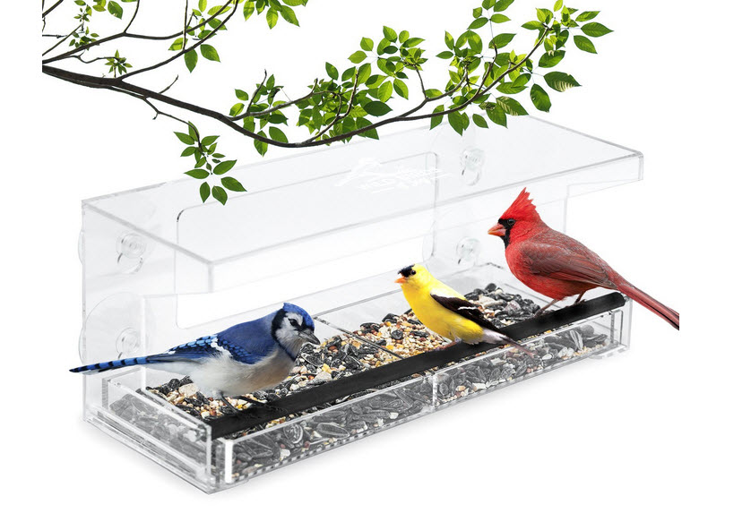 Wild Birds of Joy Feeder with 4 Super Strong Suction Cups